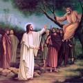 Память святого мученика Трифона. Неделя о Закхее.
